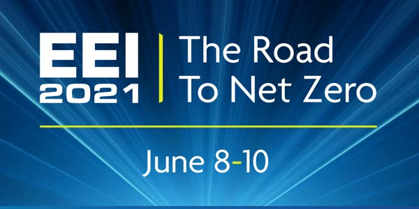 EEI The Road to Net Zero
